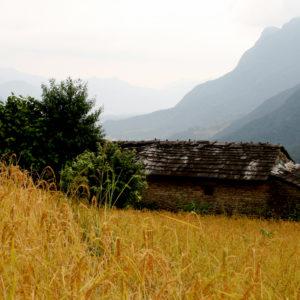 Nepal, una casa nei campi in montagna durante un trekking