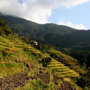 Nepal, paesini arroccati sui pendii lavorati per le coltivazioni