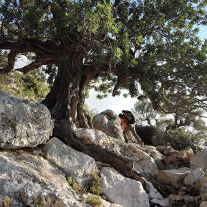 Selvaggio Blu, la prima parte di traccia da Pedra Longa