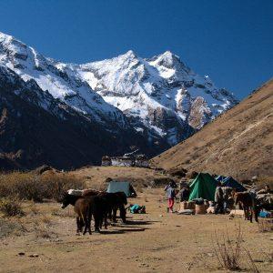 Le cime Himalayane durante il trekking in Bhutan