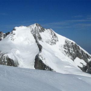 La vetta del Piz Bernina