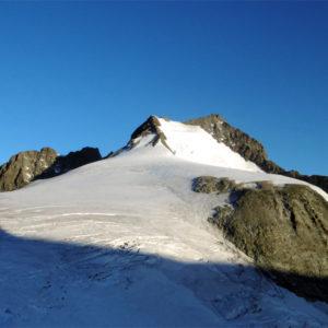 La cima del Piz Bernina