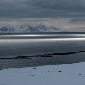 Riflessi sul Forlandsundet, il braccio di mare fra l'isola Prins Karls Forland e Spitzbergen